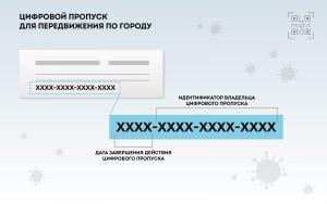 covid-propusk-02
