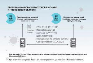covid-propusk-05